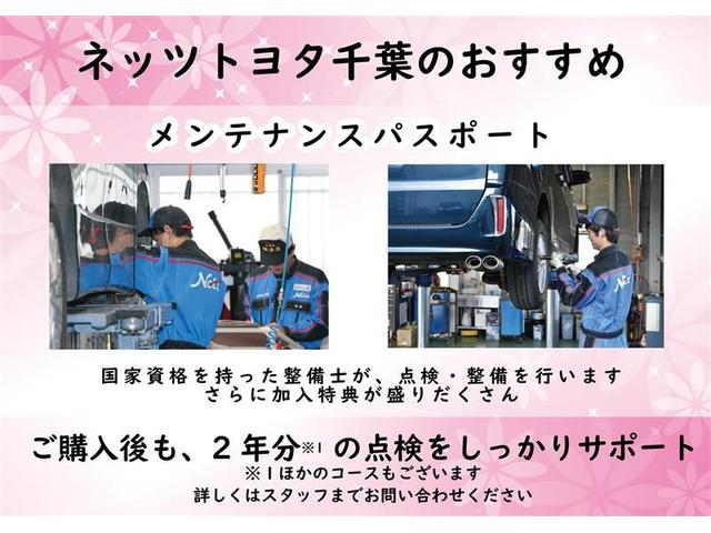 Sスタイルブラック ワンセグ メモリーナビ バックカメラ 衝突被害軽減システム ETC LEDヘッドランプ(29枚目)