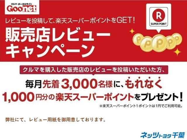 Z Gエディション SDナビ フルセグTV 後席モニター(53枚目)