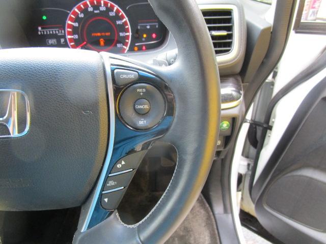 アブソルート・EX 純正ナビ フルセグ 両側電動スライドドア WORK20インチAW 車高調(17枚目)