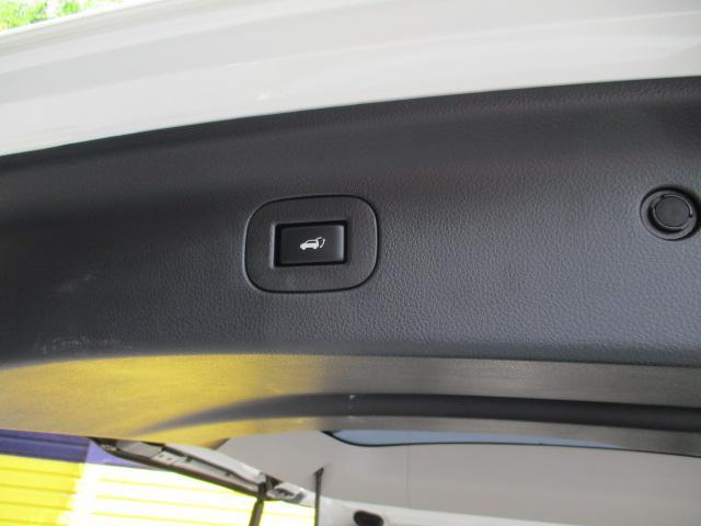 ライダー 黒本革シート アルパインナビ・フルセグ・Bカメラ・RAYS22AW・車高調・フリップダウンモニター・サンルーフ・パワーバックドア(19枚目)