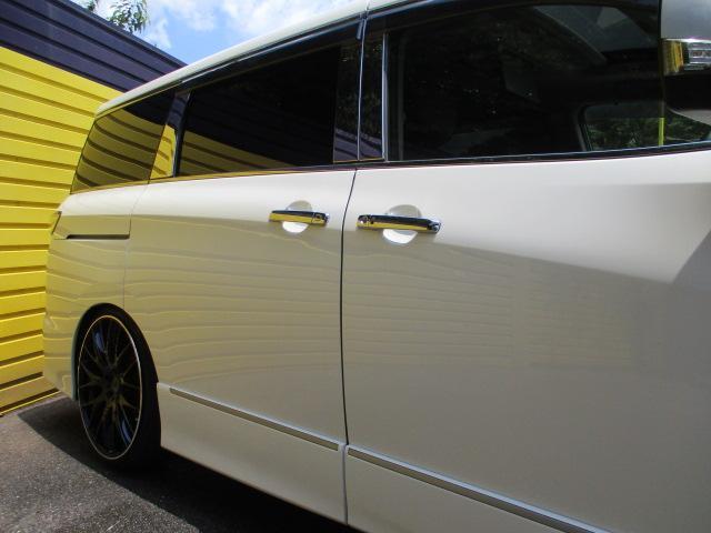 ライダー 黒本革シート アルパインナビ・フルセグ・Bカメラ・RAYS22AW・車高調・フリップダウンモニター・サンルーフ・パワーバックドア(22枚目)