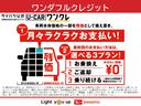 Xセレクション パノラマカメラ オーディオディスプレイ付き(55枚目)