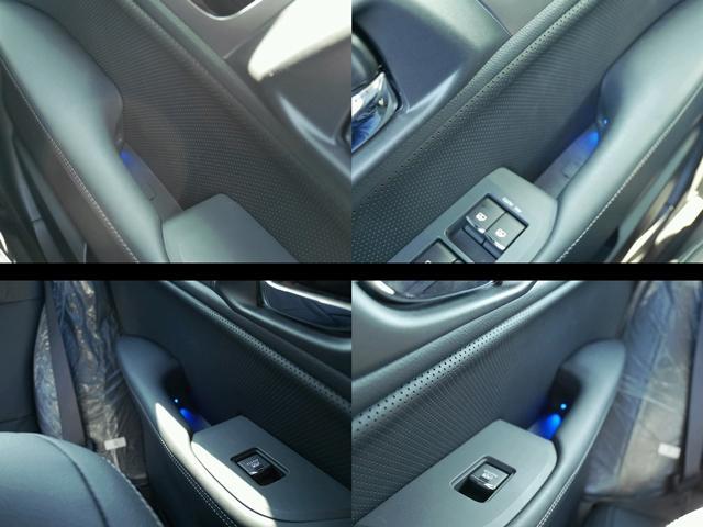 こちらはリミテッド標準のプルハンドル照明です。ドアのハンドルにブルーの照明が付いているのです。これがあるので夜間、ドアを開けるときにハンドルの場所を手さぐりしないで済みます。ブルー照明がまたいいです