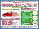 F ワンオーナー メモリーナビ ワンセグTV 走行9000キロ ワイヤレスキー サイドバイザー スペアタイヤ(20枚目)