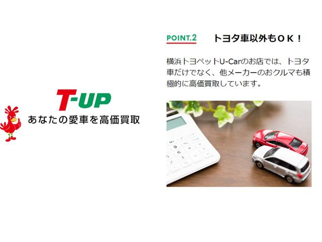 プレミアム メタルアンドレザーP・サンルーフ・ナビ・PCS(44枚目)