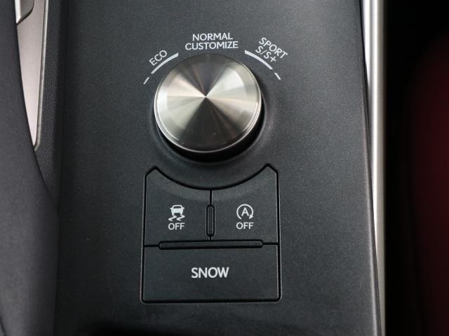 IS300 Fスポーツ 革シート サンルーフ ワンセグ メモリーナビ バックカメラ ドラレコ 衝突被害軽減システム ETC LEDヘッドランプ ワンオーナー DVD再生 ミュージックプレイヤー接続可 記録簿 安全装備 CD(11枚目)