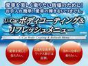 プログレス スタイルブルーイッシュ ETC メモリーナビ ワンオーナー TSS(29枚目)