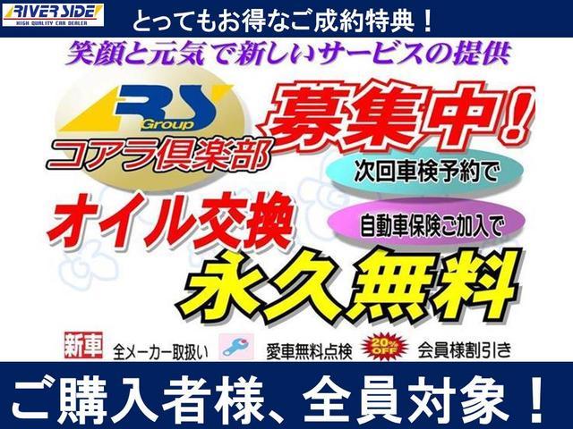 G SAII エコアイドル両側電動スライドLEDライト(18枚目)