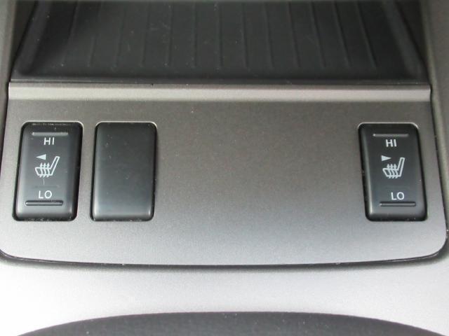 250XV サンル-フ 黒本革シ-ト BOSE HDDナビ(10枚目)