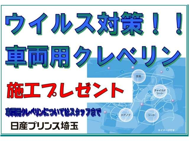 DX WAKO製SKYパワーゲート スライドSウインド 天井トリム付き(2枚目)