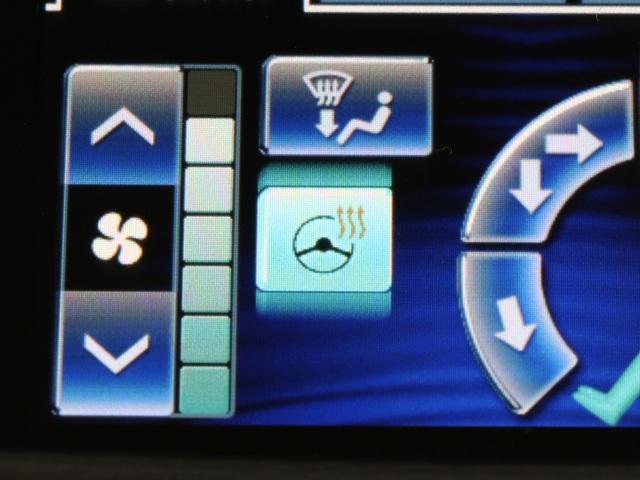 ロイヤルサルーン HID ワンオーナー HDD フルセグ(9枚目)
