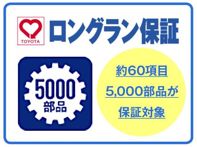 Gソフトレザーセレクション 衝突被害軽減・ドラレコ・スマート(45枚目)