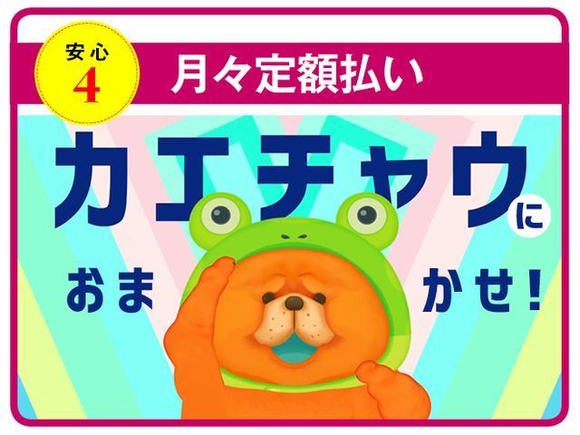Gソフトレザーセレクション 衝突被害軽減・ドラレコ・スマート(48枚目)