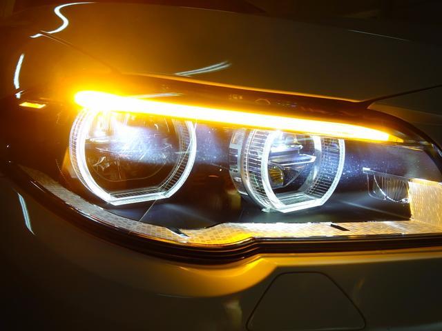 BMW BMW アクティブハイブリッド5 ラグジュアリー 19AW LED
