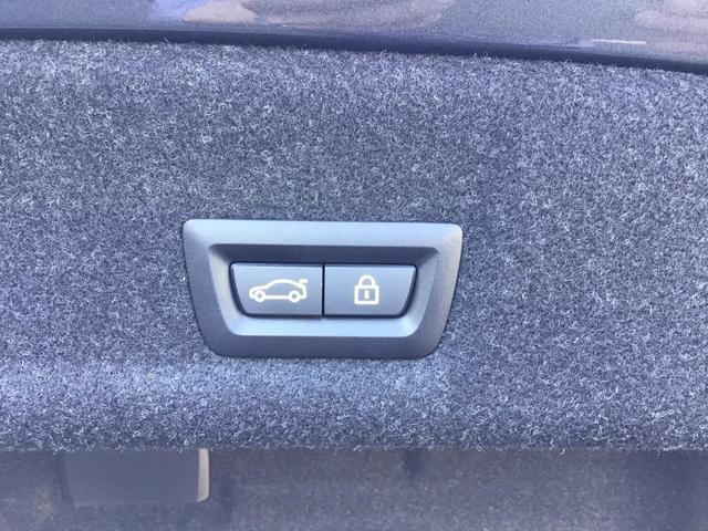 330i Mスポーツ デビューパッケージ アクティブクルーズコントロール ドライブアシスト コンフォートアクセス 純正HDDナビ Blue Tooth ミュージックサーバー アイドリングストップ LED ETC 禁煙車(51枚目)