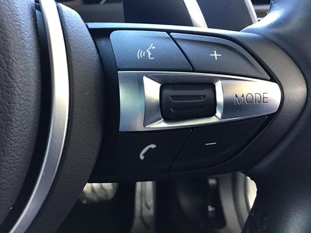 320i Mスポーツ エディションシャドー アクティブクルーズコントロール ドライブアシスト ブラックレザー Rカメラ 前後PDC コンフォートアクセス パドルシフト アイドリングストップ LED ETC 19インチAW SOSコール 禁煙車(42枚目)