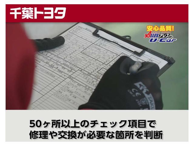 ハイブリッドF(30枚目)