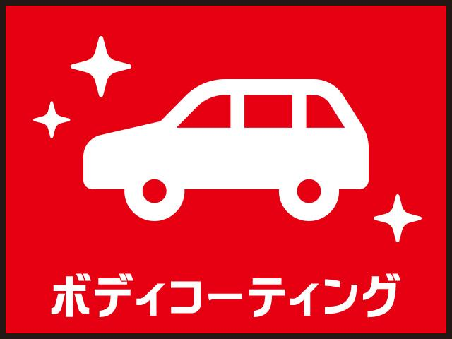 X リミテッドSAIII ヘッドライトLED バックカメラ付(24枚目)