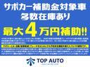 L SAII 衝突軽減ブレーキ ナビ TV 両側パワースライドドア レーンアシスト DVD再生 Bluetooth接続 純正アルミ アイドリングストップ プッシュスタート付スマートキー ロッドホルダー 保証付き(18枚目)