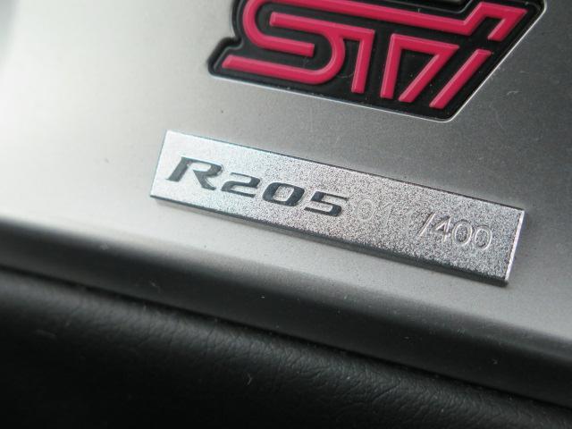 R205 400台限定車 HDD ブレンボ STI18インチ(15枚目)
