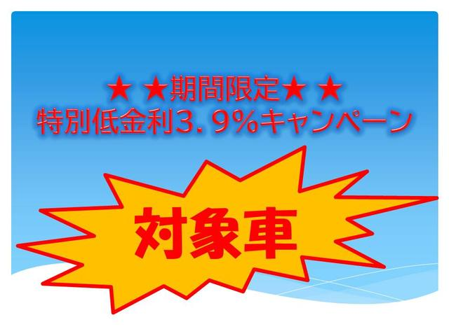 期間限定!低金利【3.9%】キャンペーン対象車!