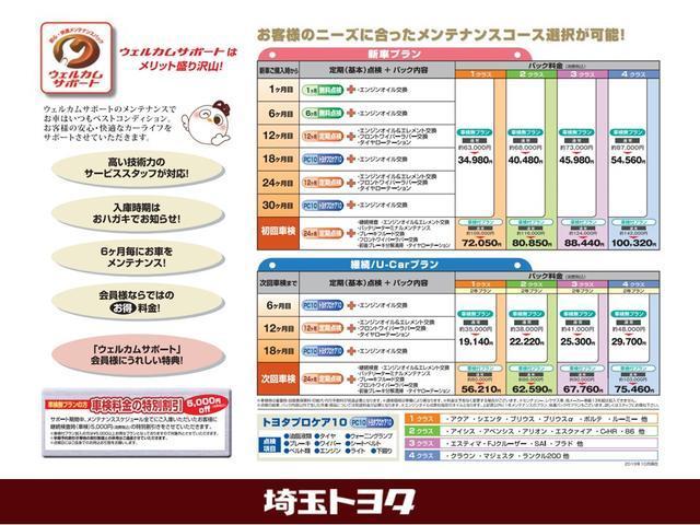 G ツーリングセレクション・Aパッケージ HDDナビフルセグバックモニターETCワンオーナーLEDヘッドライト(36枚目)