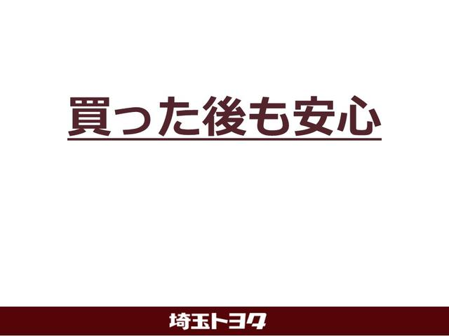S LEDエディション ワンオーナー メモリーナビ ワンセグ(29枚目)
