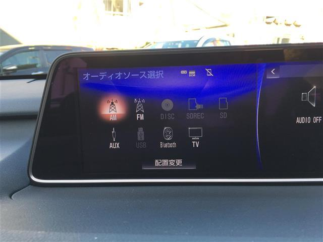 RX200t 純正ナビ アルミ プリクラ 電動リアゲート(6枚目)