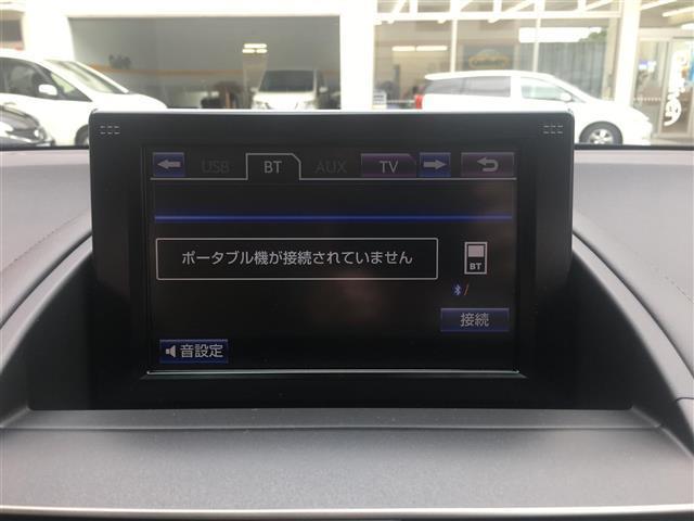 250h バージョンI(10枚目)