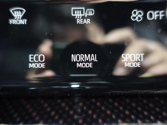 プレミアム 禁煙車 トヨタセーフティセンス 10型BIG-X バックカメラ LEDヘッドライト シーケンシャルウィンカー レーダークルーズ クリアランスソナー 電動リア ハーフレザー 純正18インチAW ETC(37枚目)
