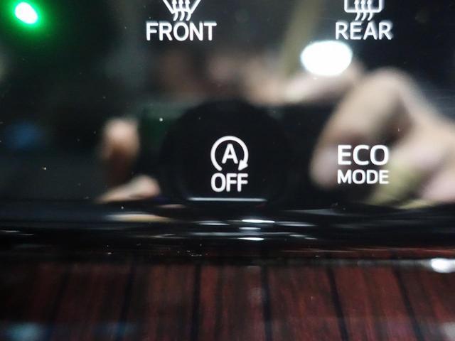 プレミアム 9型BIGX サンルーフ クルーズコントロール 電動リアゲート ハーフレザー LEDヘッド オートライト 純正18AW レーンアシスト ETC バックカメラ(36枚目)