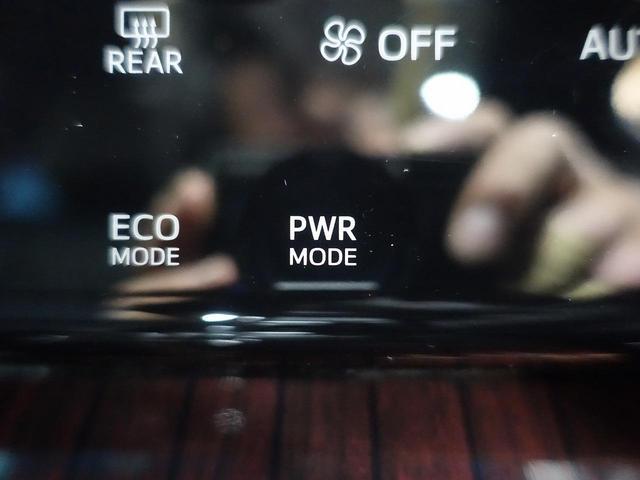 プレミアム 9型BIGX サンルーフ クルーズコントロール 電動リアゲート ハーフレザー LEDヘッド オートライト 純正18AW レーンアシスト ETC バックカメラ(38枚目)