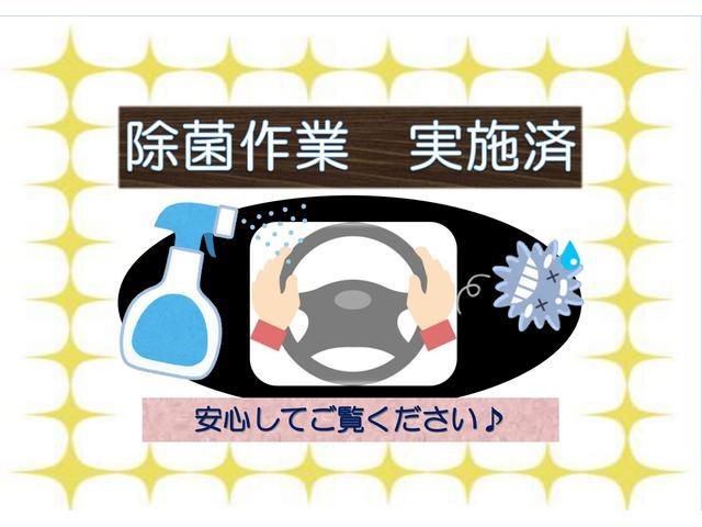 HYBRID Gターボ デュアルカメラブレーキ(31枚目)