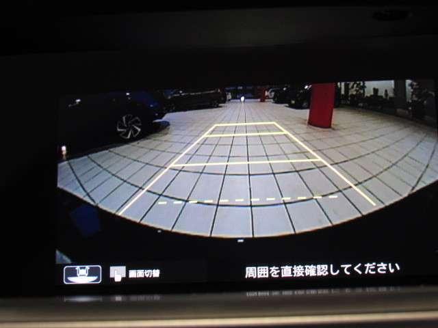 EX 純正ナビ フルセグ リアカメラ ETC(14枚目)