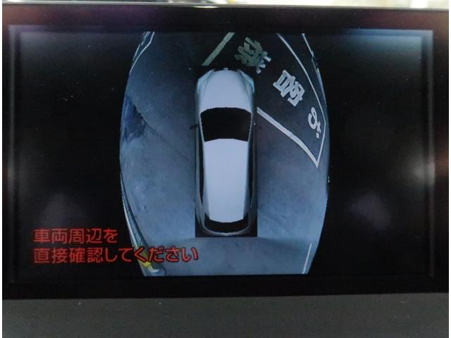 NX300hFスポ 三眼LED プリクラ 赤革 全方位カメ(16枚目)