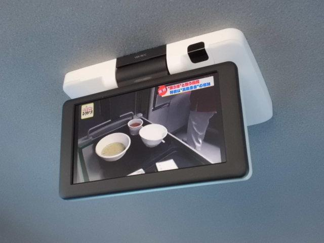 DICE 車検令和4年11月 純ナビ フルセグテレビ バックカメラ フリップダウンモニター キセノンライト AUX DVDビデオ再生 ETC キーレスキー スペアキー フォグライト タイミングチェーン式(5枚目)