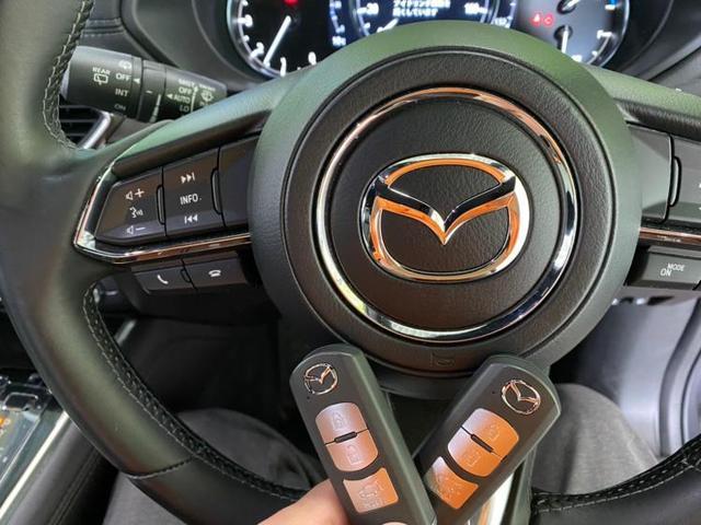 4WD XD Lパッケージ 社外メモリーナビ/シートフルレザー/車線逸脱防止支援システム/パーキングアシストバックガイド/電動バックドア/ヘッドランプLED/ETC/EBD付ABS/横滑り防止装置 革シート バックカメラ(17枚目)