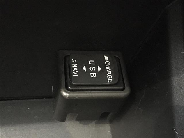 G SAIII ツートンカラー 全周囲カメラ 純正エンジンスターター LEDヘッドライト(30枚目)