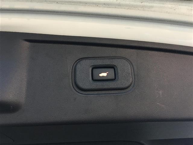 タイプS ワンオーナー電動リアゲート純正HDDナビフルセグテレビDVD再生可能バックカメラクルーズコントロールハーフレザーシートD席パワーシートETC(6枚目)