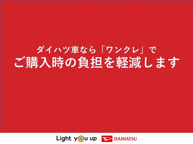 X リミテッドSA3 LEDヘッドライト・バックカメラ(59枚目)
