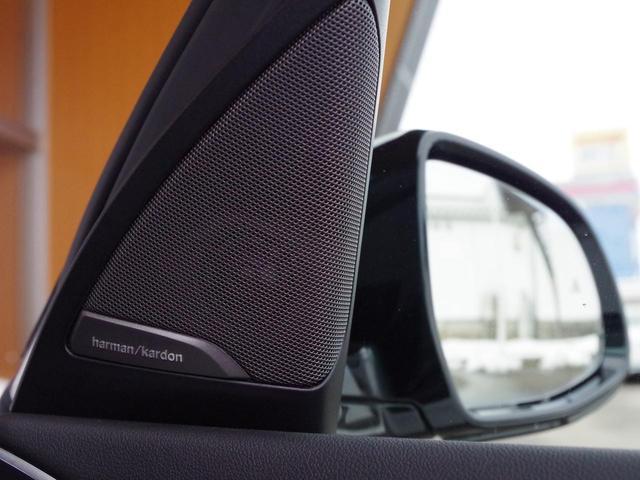 「BMW」「X3」「SUV・クロカン」「富山県」の中古車53