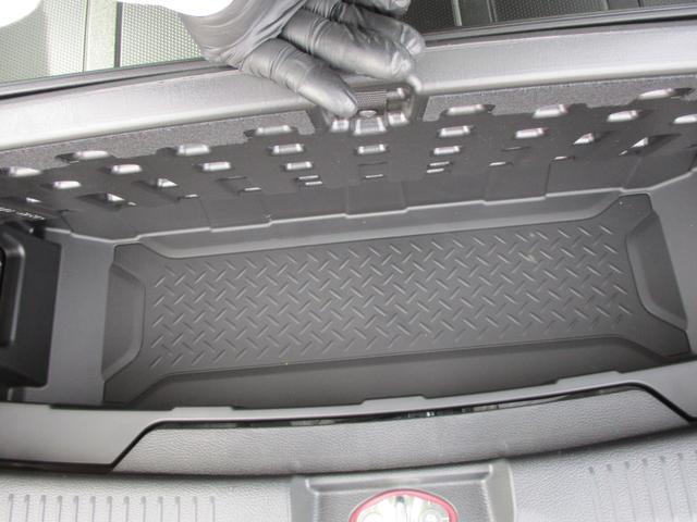 ラゲッジアンダーボックス。リアのラゲッジスペースの下にも巨大なラゲッジスペースがあります。便利な収納スペースです。