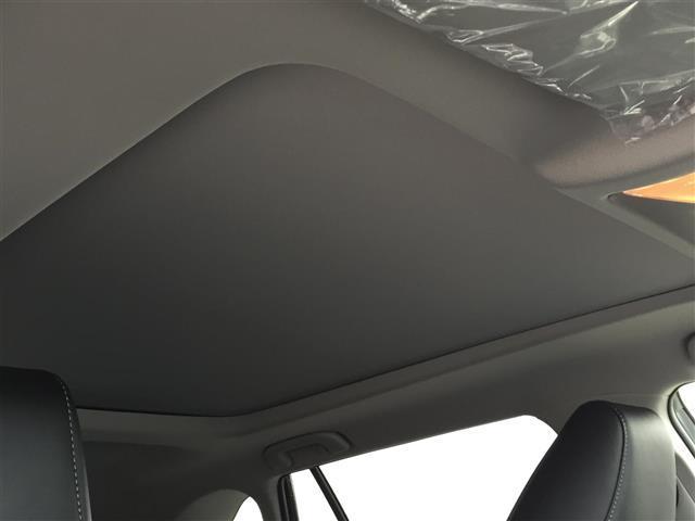 G Zパッケージ 衝突軽減ブレーキ レーダークルコン 4WD オートブレーキホールド サンルーフ パワーバックドア LEDヘッドライト レーンキープアシスト ステアリングヒーター 前席シートヒーター パワーシート(20枚目)