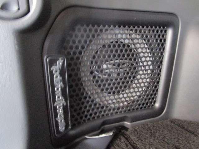 2.4 ローデスト G プレミアム 4WD(9枚目)