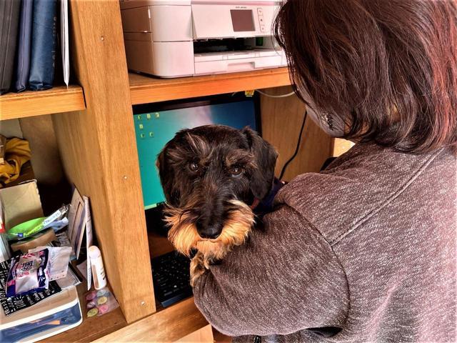 犬担当のレオです。前後のシート距離が近いのが魅力です。