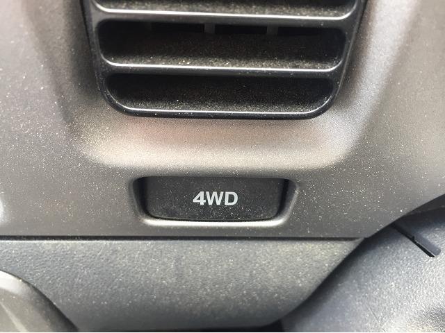 デラックスリミテッド4WD(14枚目)