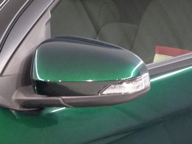 ウィンカー付ドアミラーです、デザイン性だけではなく、これは巻き込み事故の防止にもなってます