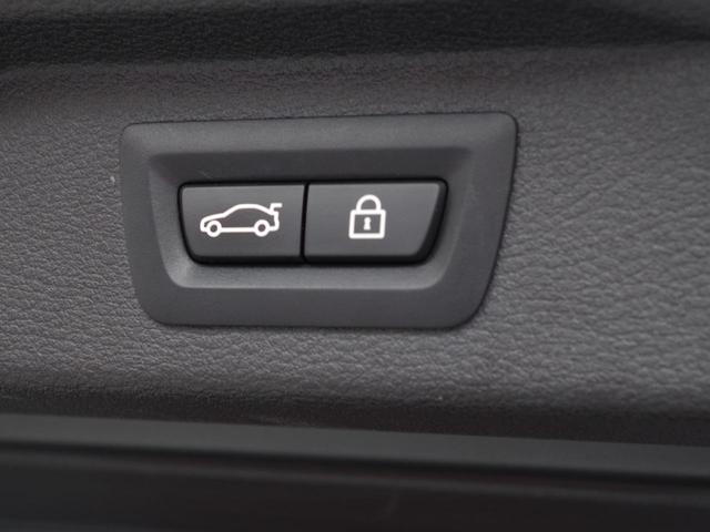 xDrive 35d Mスポーツ セレクトPKG赤革SRナビ(17枚目)