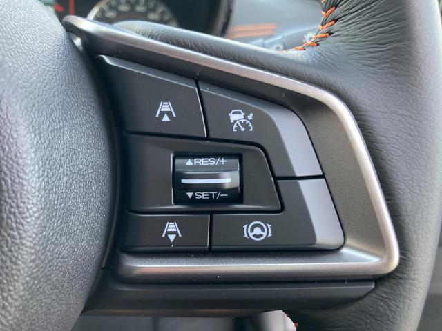 ◆レーダークルーズコントロール【アクセルを離しても一定速度で走れる装備です。】