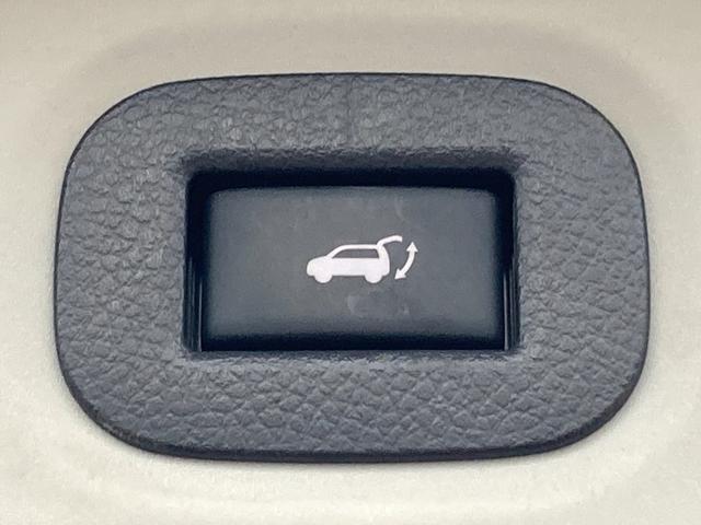 20Xt エマージェンシーブレーキパッケージ 純正メーカーナビ フルセグTV Bluetooth接続 アラウンドビューモニター バックモニター エマージェンシーブレーキ 車線逸脱警報 LDW クルーズコントロール シートヒーター ビルトインETC(29枚目)